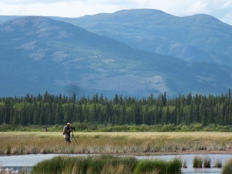Cameron Scoping the Wetlands