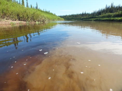 The clear water of the creek meets the muddy water of the Eagle River